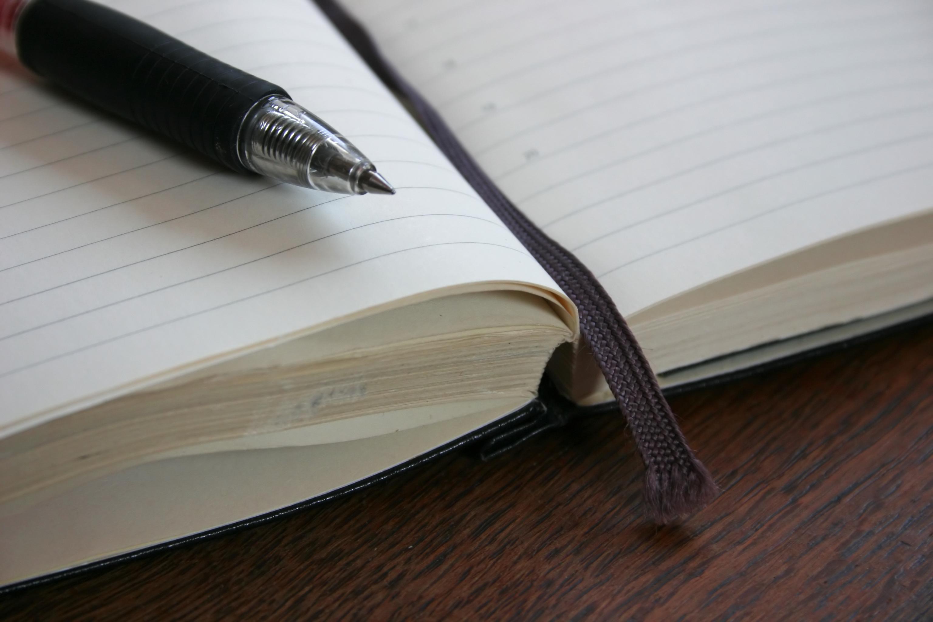 Penna_sul_libro