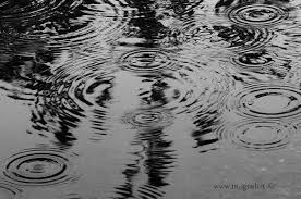 pioggia quiete